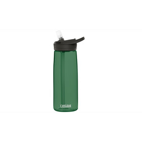 CamelBak Eddy+ Gourde 750ml, hunter